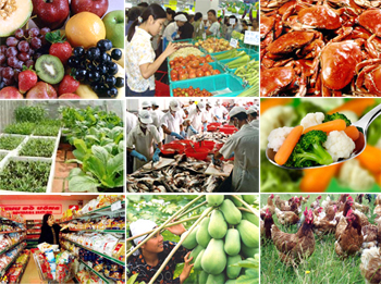 Foreign Agro-food establisments approved for export products to Viet Nam